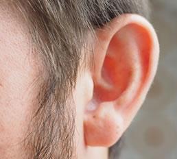 anzai-ear